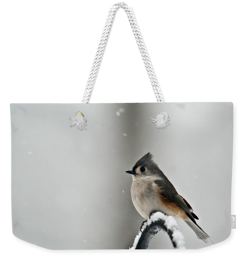 Tufted Weekender Tote Bag featuring the photograph Titmouse On Snowy Arch by Douglas Barnett