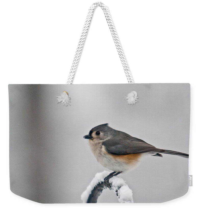 Titmouse Weekender Tote Bag featuring the photograph Titmouse Ready To Fly by Douglas Barnett