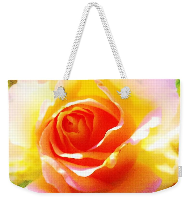 Weekender Tote Bag featuring the photograph Tjs Rose A Glow by Daniel Thompson