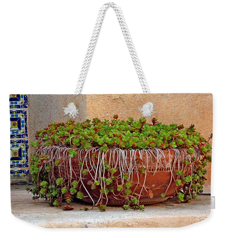 Tlaquepaque Weekender Tote Bag featuring the photograph Tlaquepaque Potted Greens by Robert Meyers-Lussier