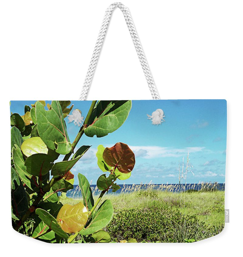 Florida Weekender Tote Bag featuring the photograph To The Sky Gp by Chris Andruskiewicz
