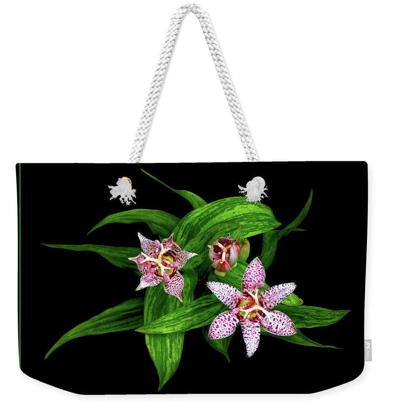 Toad Lily Weekender Tote Bag featuring the photograph Toad Lily by Carolyn Derstine