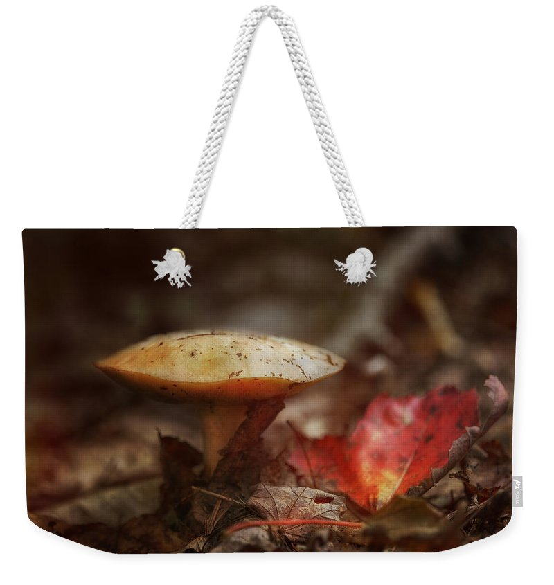 Sue Capuano Weekender Tote Bag featuring the photograph Toasty Glow by Susan Capuano