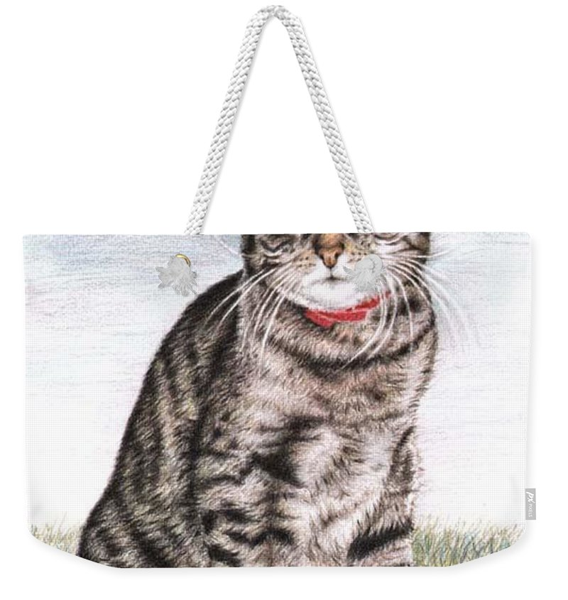 Cat Weekender Tote Bag featuring the drawing Tomcat Max by Nicole Zeug