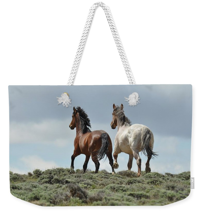 Wild Horses Weekender Tote Bag featuring the photograph Too Beautiful by Frank Madia