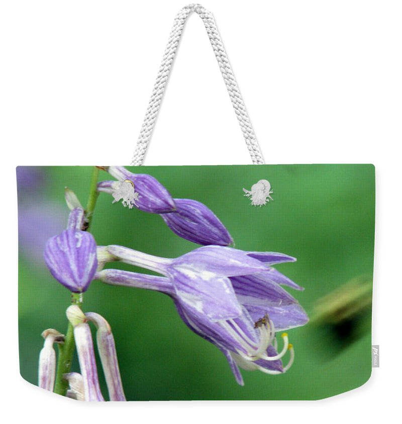 Bees Weekender Tote Bag featuring the photograph Too Busy To Notice by Amanda Barcon