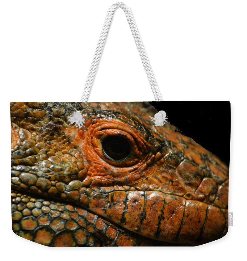 Lizard Weekender Tote Bag featuring the photograph Too Close For Comfort by Gary Smith