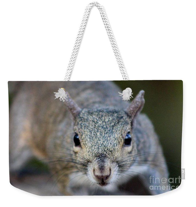 Squirrel Weekender Tote Bag featuring the photograph Too Close by Mesa Teresita