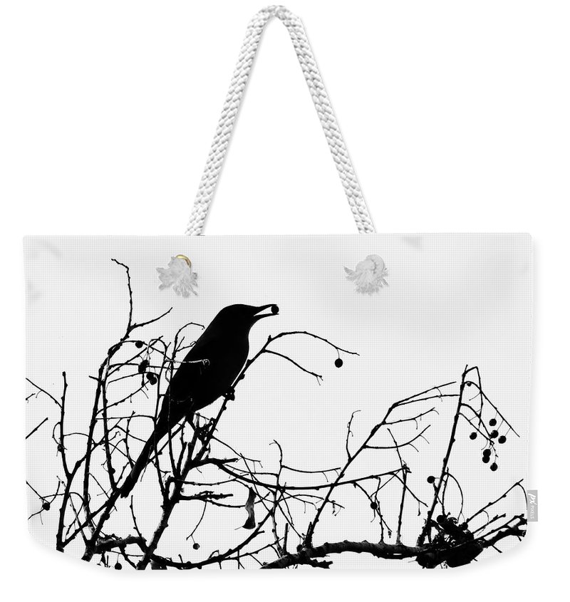 Nature Weekender Tote Bag featuring the photograph Top Bird by Peg Urban