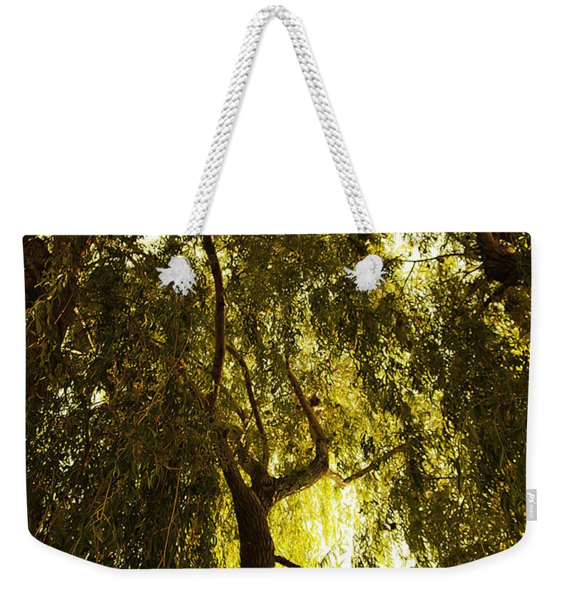 Art Weekender Tote Bag featuring the photograph Top View by Svetlana Sewell
