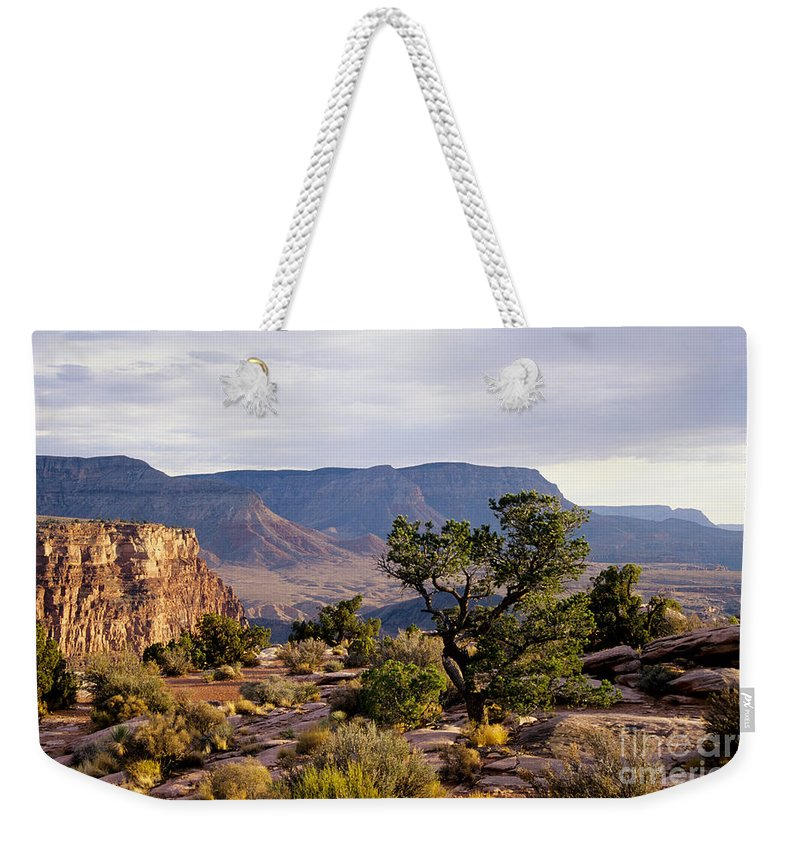 Arizona Weekender Tote Bag featuring the photograph Toroweap by Kathy McClure