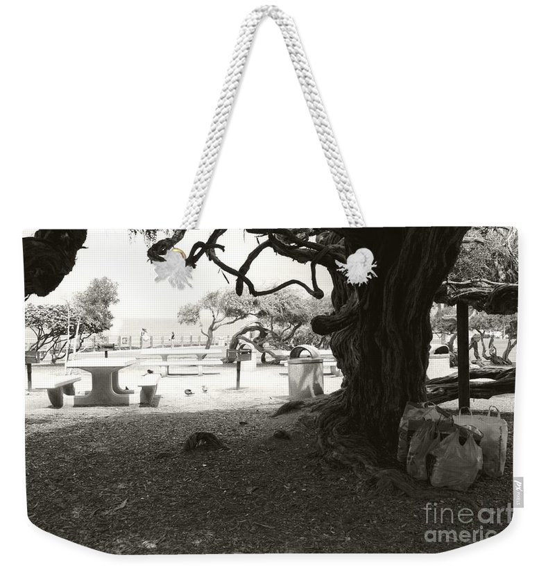 La Jolla Weekender Tote Bag featuring the photograph Torrey Pines Baggage Claim by Heather Kirk