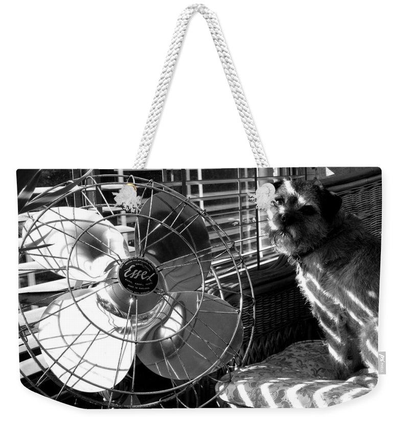 Electric Fan Weekender Tote Bag featuring the photograph Toto Checks In by Charles Stuart