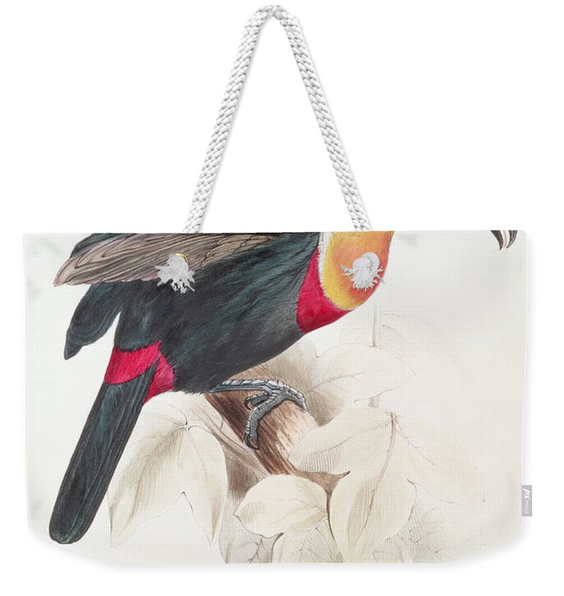 Sulphur Weekender Tote Bag featuring the painting Toucan by Edward Lear