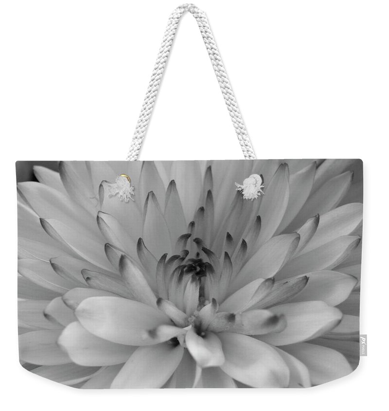 Nature Weekender Tote Bag featuring the photograph Touch Of Black by Shannon Turek