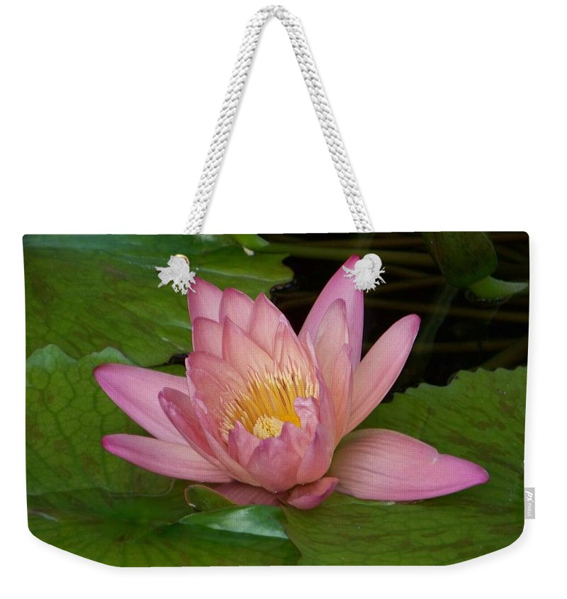 Water Lilly Weekender Tote Bag featuring the photograph Touch Of Pink by Karen Wiles