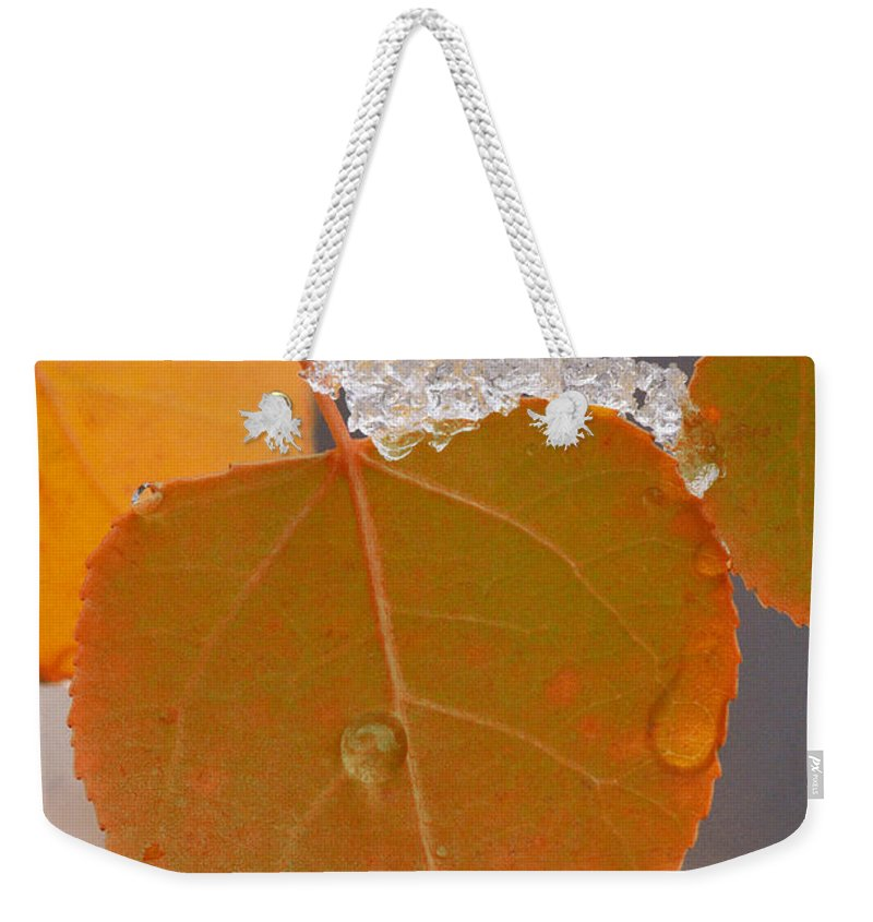 Grand Teton Weekender Tote Bag featuring the photograph Touch Of Winter by Sandra Bronstein