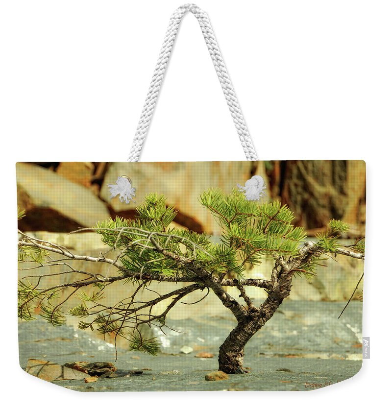 Tree Weekender Tote Bag featuring the photograph Tough Upbringing by Donna Blackhall