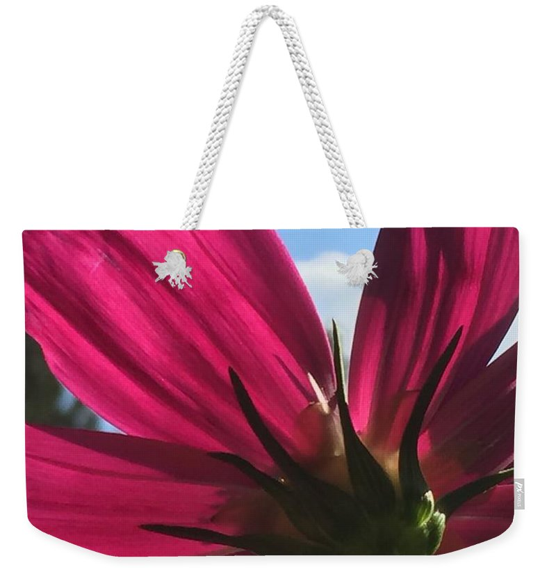 Flower Weekender Tote Bag featuring the painting Toward the Light by Vonda Drees