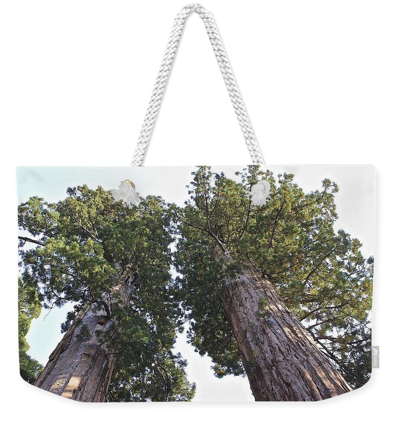Sequoia Weekender Tote Bag featuring the photograph Towering Giants by FlyingFish Foto