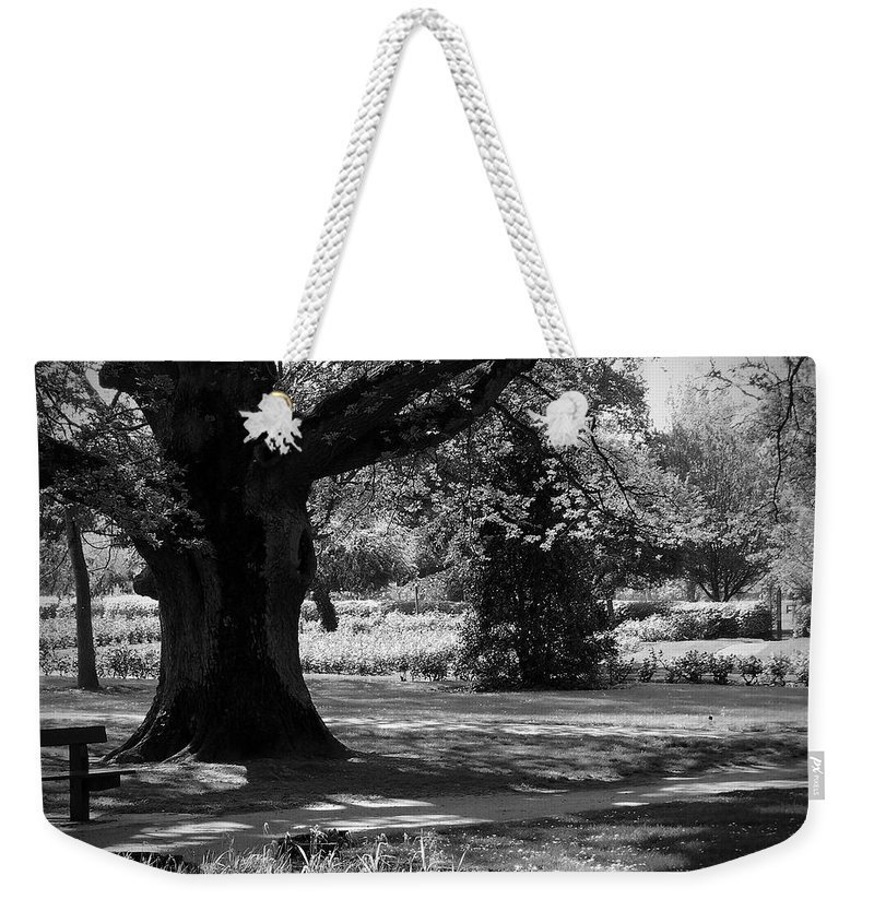 Irish Weekender Tote Bag featuring the photograph Tralee Town Park Ireland by Teresa Mucha