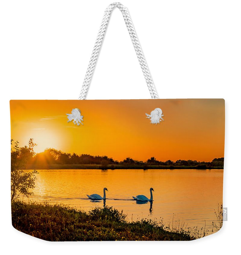 Swan Weekender Tote Bag featuring the photograph Tranquility by Nick Bywater