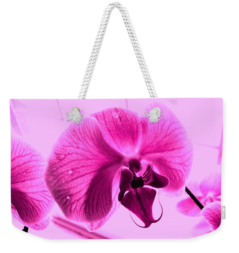 Purple Weekender Tote Bag featuring the photograph Translucent Purple Petals by Michael Grubb