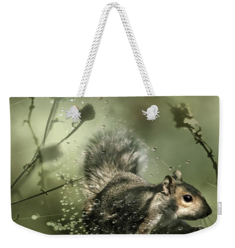 Cobweb Weekender Tote Bag featuring the photograph Trapped by Angel Ciesniarska