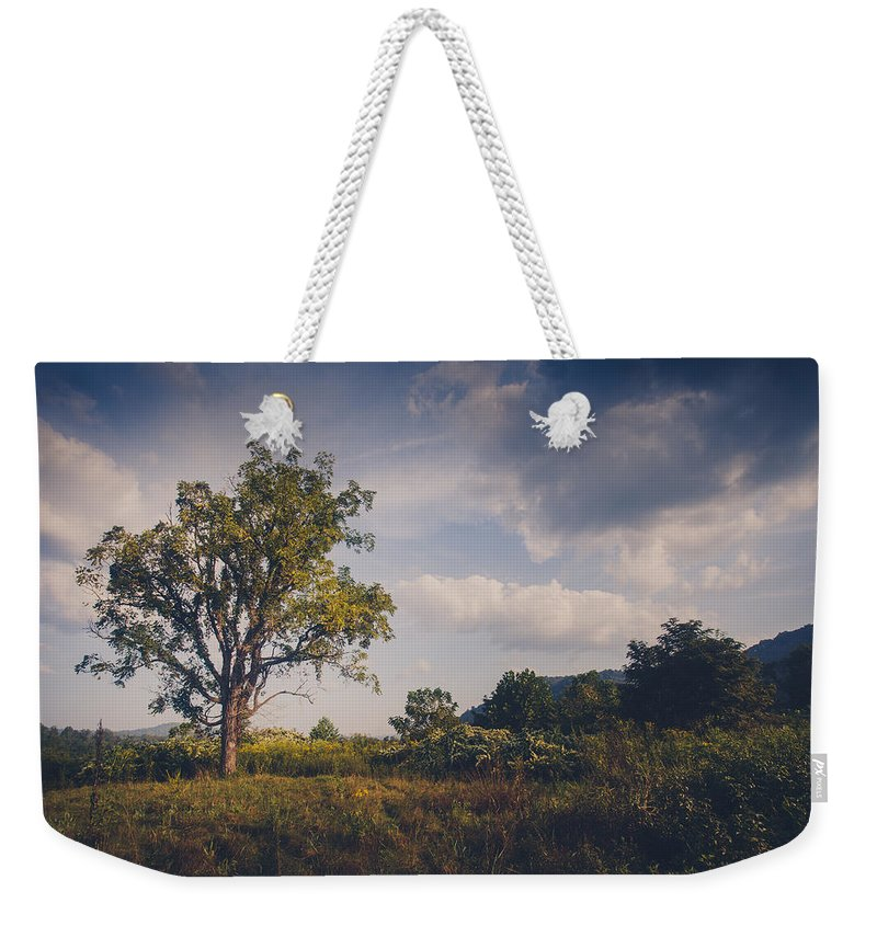 Tree Weekender Tote Bag featuring the photograph Tree 23 by Shane Holsclaw