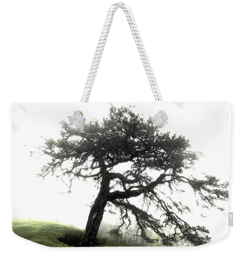 Hdr Weekender Tote Bag featuring the photograph Tree by Alex Grichenko