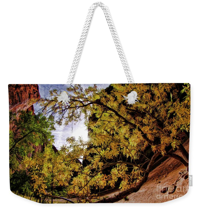 Weekender Tote Bag featuring the photograph Tree Along Zion Riverside Walk by Blake Richards