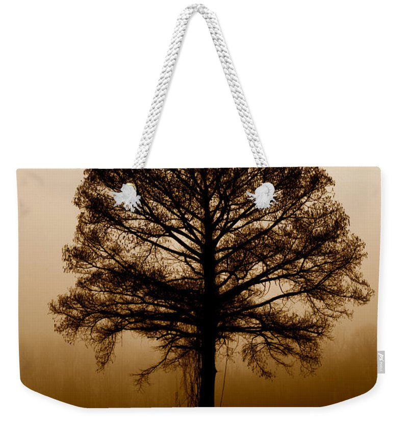 Trees Weekender Tote Bag featuring the photograph Tree by Amanda Barcon