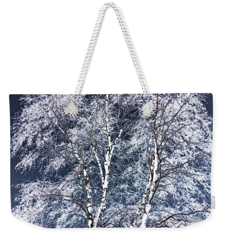 Tree Weekender Tote Bag featuring the digital art Tree Fantasy 14 by Lee Santa