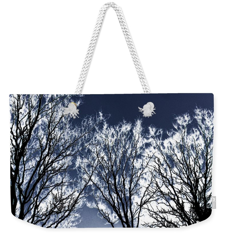 Scenic Weekender Tote Bag featuring the photograph Tree Fantasy 2 by Lee Santa