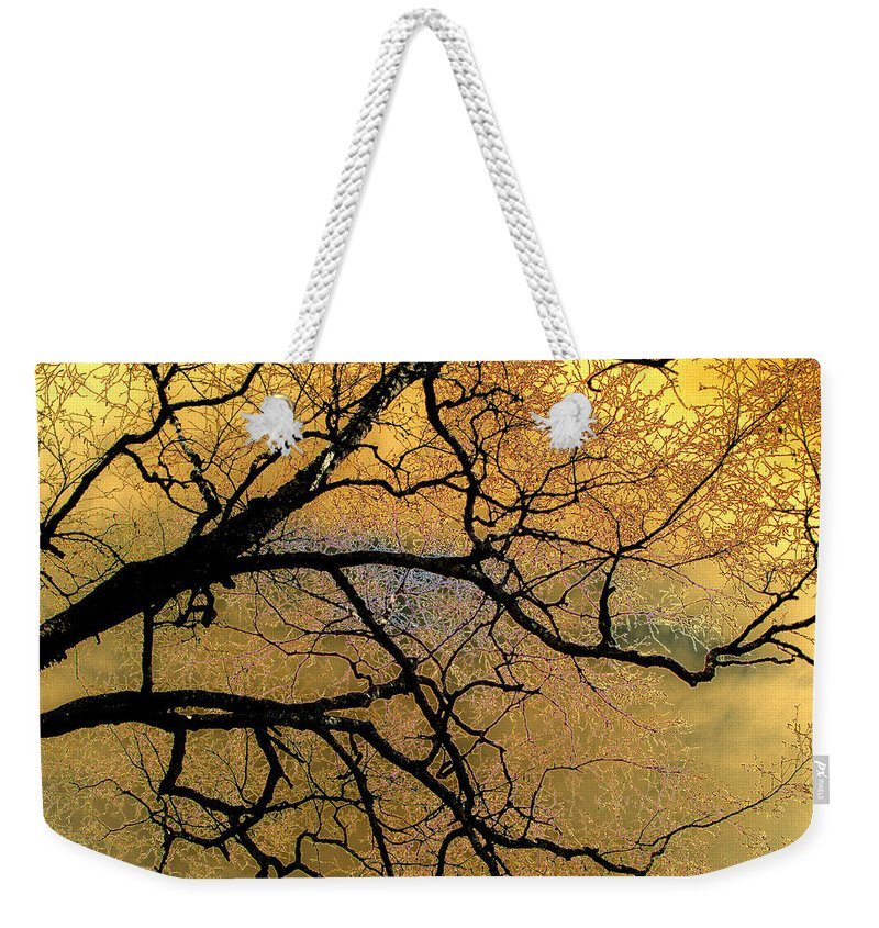 Scenic Weekender Tote Bag featuring the photograph Tree Fantasy 7 by Lee Santa