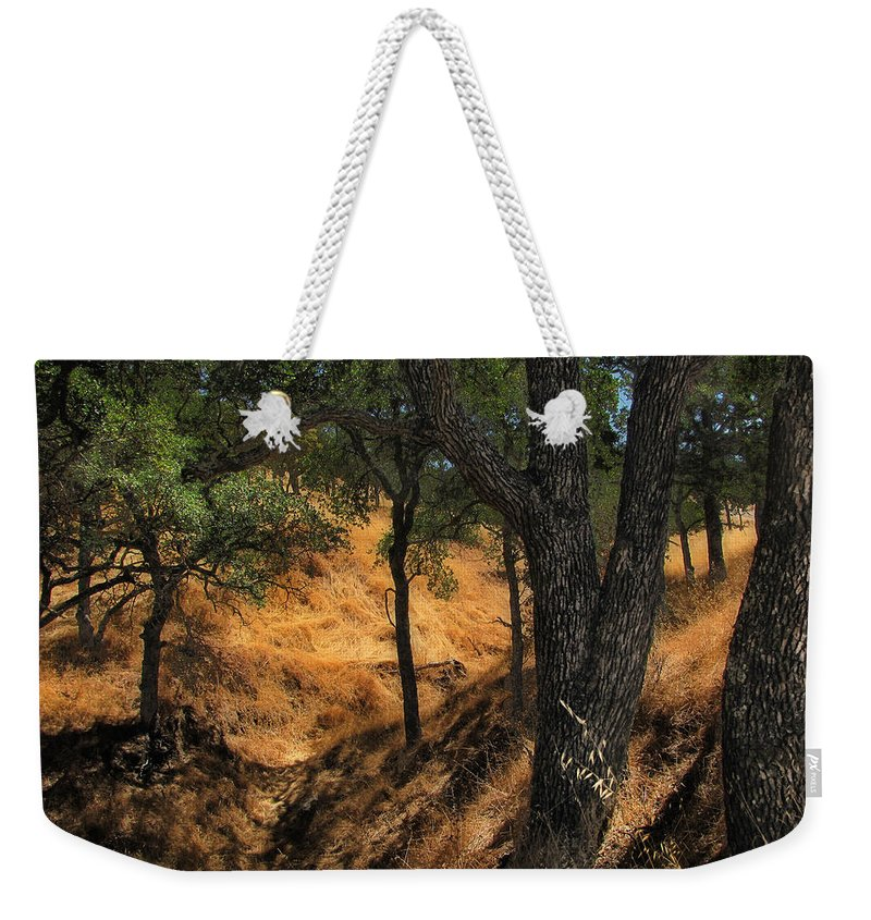 Trees Weekender Tote Bag featuring the photograph Tree Formation 4 by Karen W Meyer