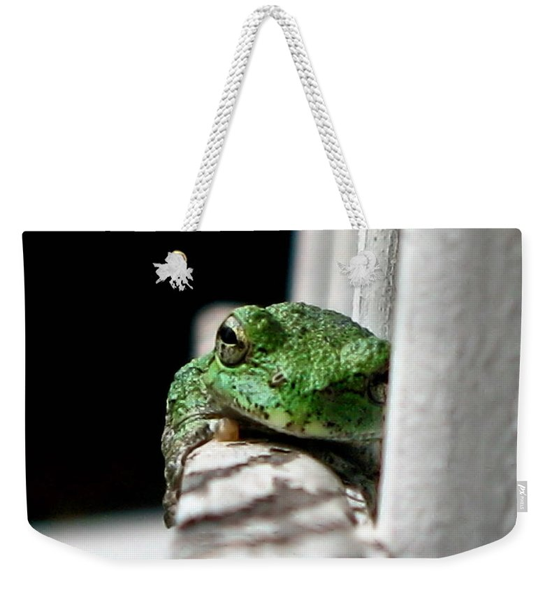 Tree Frog Weekender Tote Bag featuring the photograph Tree Frog by September Stone
