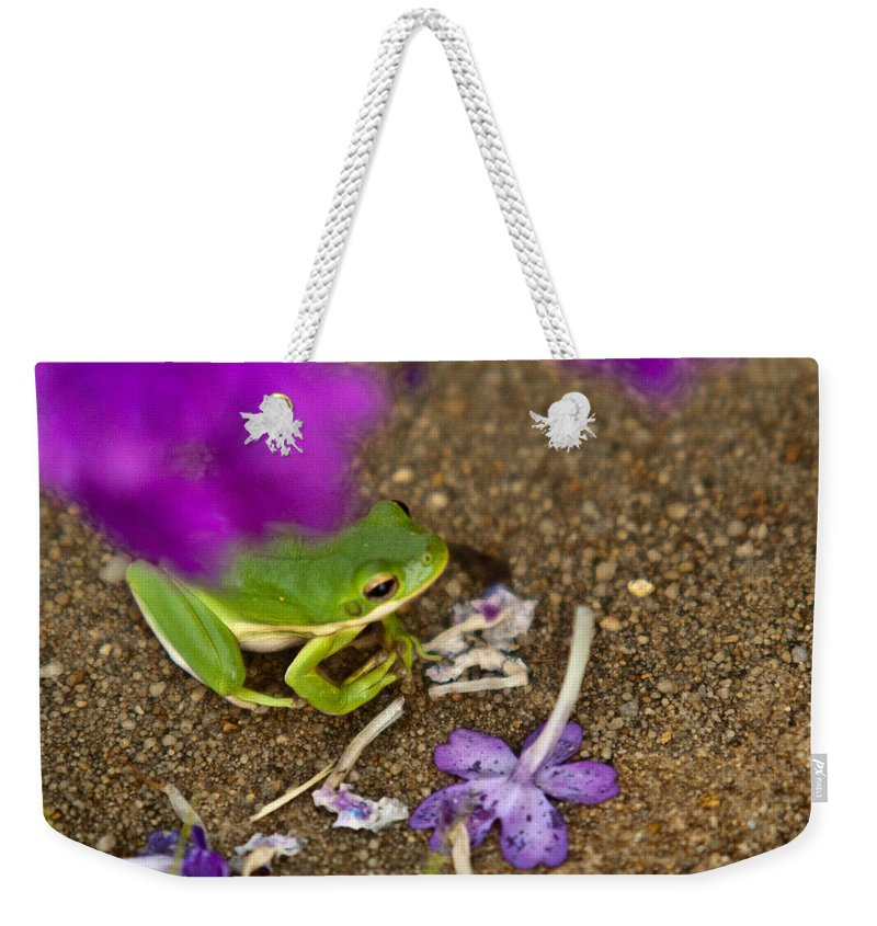 Green Weekender Tote Bag featuring the photograph Tree Frog Under Flower by Douglas Barnett