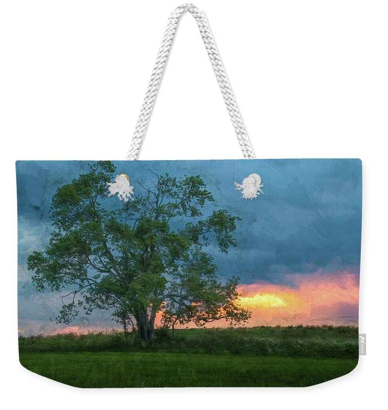 Voa Park Weekender Tote Bag featuring the photograph Tree Impression by Jim Simpson