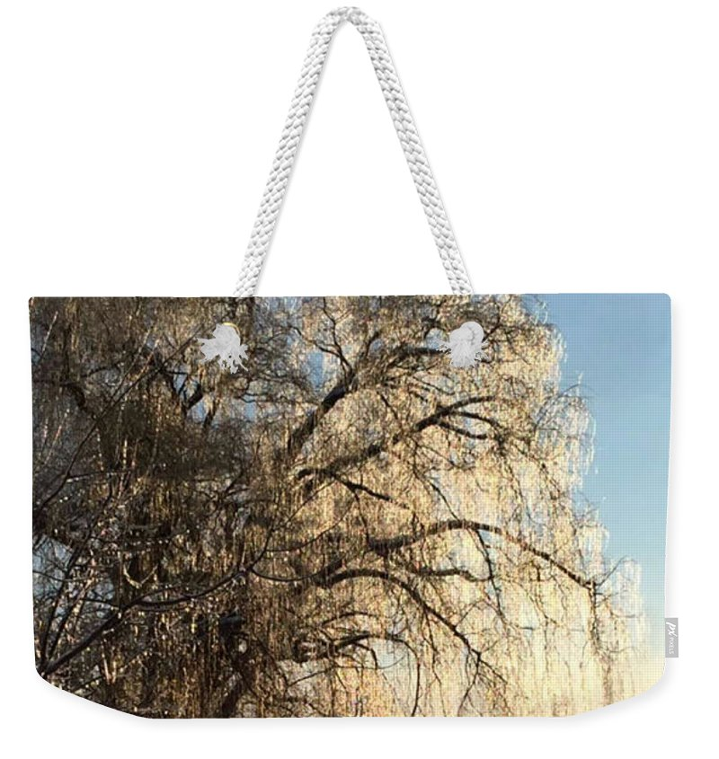 Tree Weekender Tote Bag featuring the photograph Tree In Ice by Melody Schuster