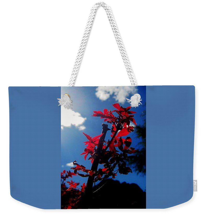 Leaves Weekender Tote Bag featuring the photograph Tree Leaves Red 061814a by Edward Dobosh