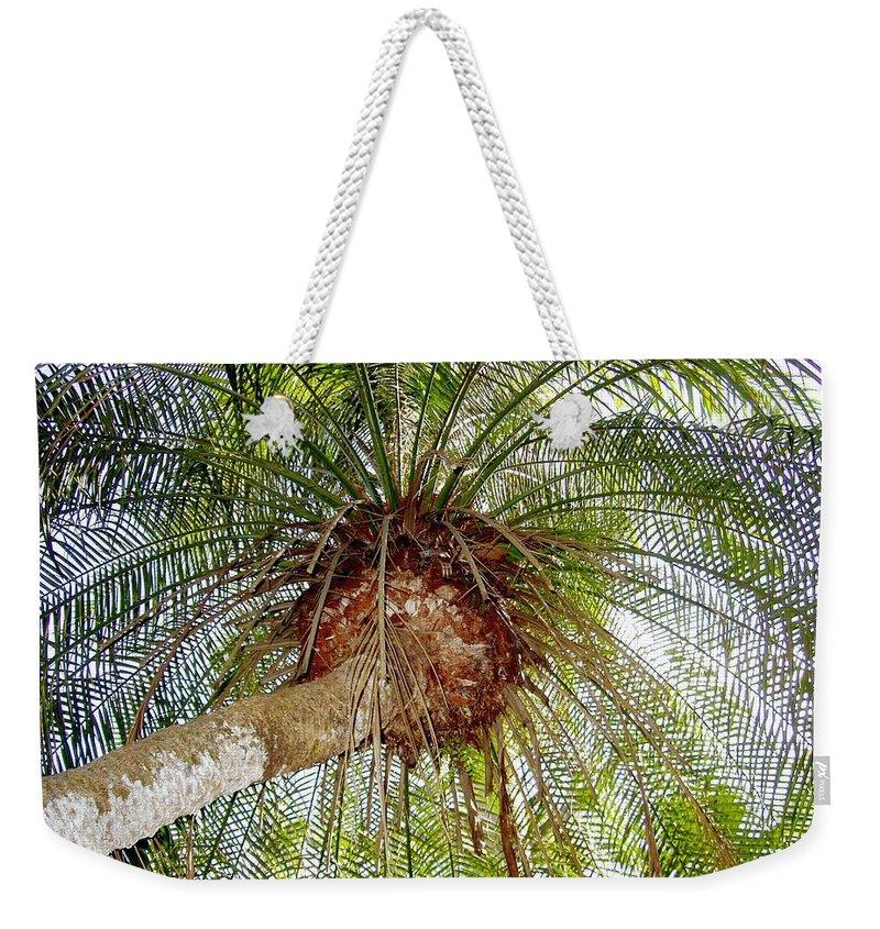 Tree Weekender Tote Bag featuring the photograph Tree Spray by Deborah Crew-Johnson