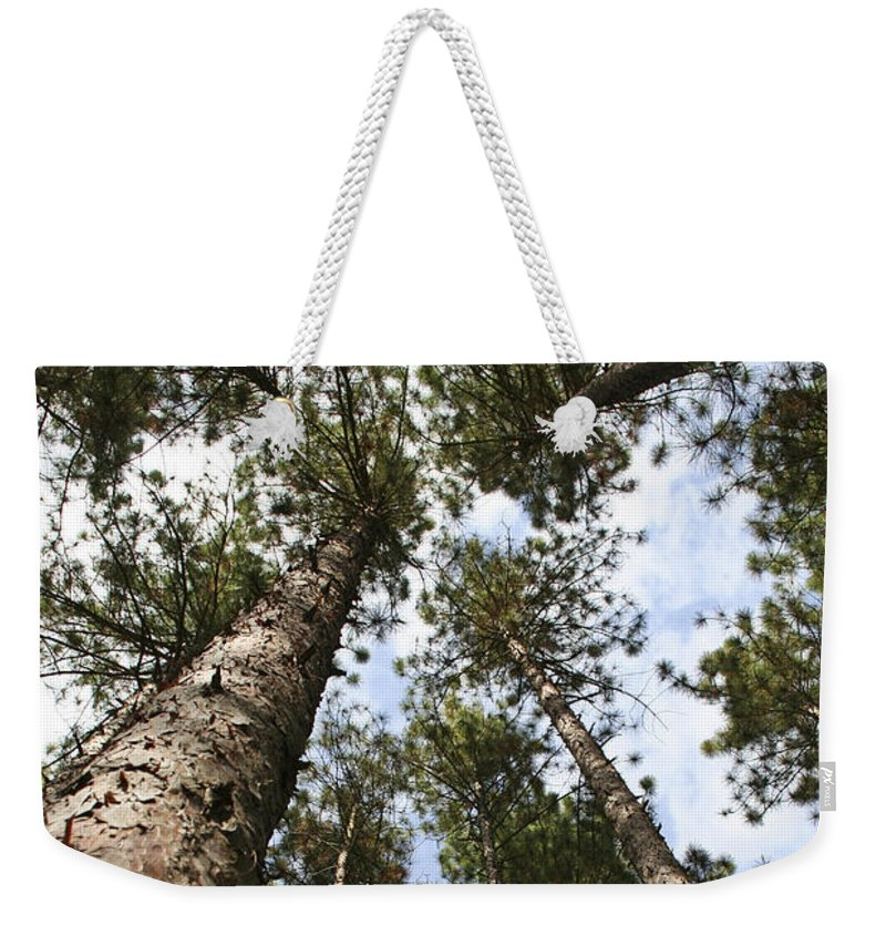 Autumn Weekender Tote Bag featuring the photograph Tree Stand by Margie Wildblood