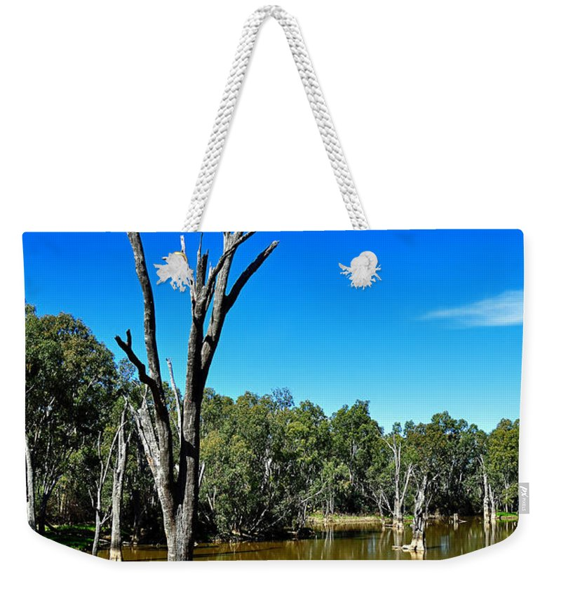 Photography Weekender Tote Bag featuring the photograph Tree Stumps In Beauty by Kaye Menner