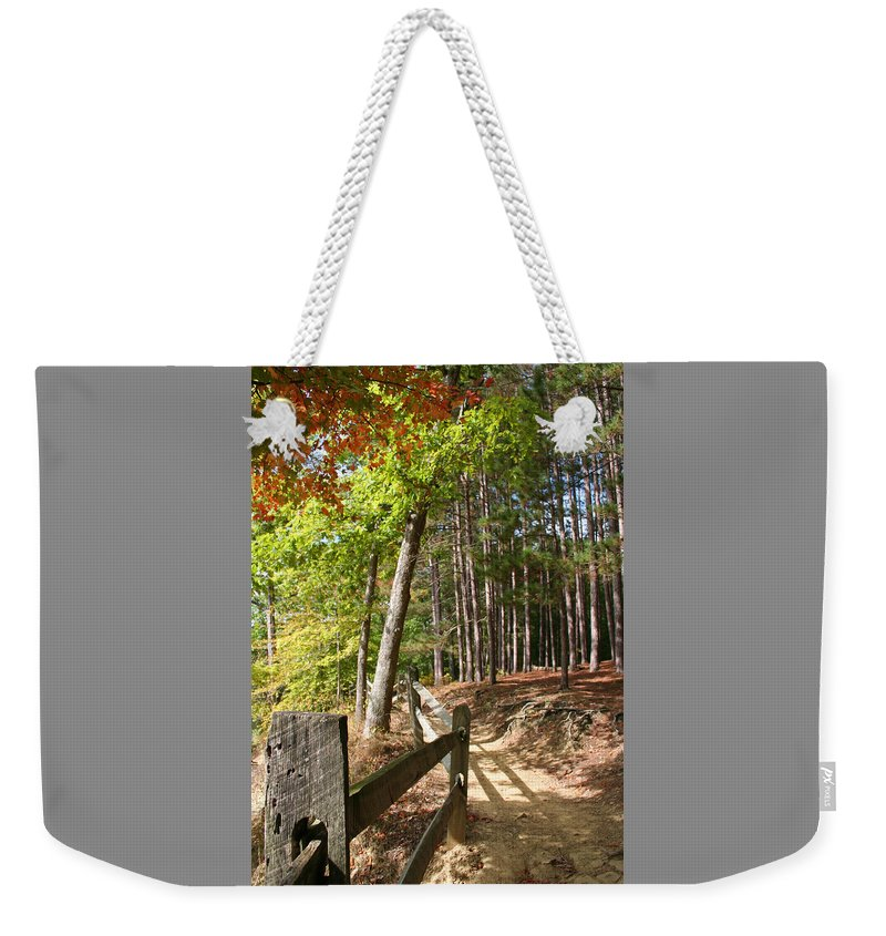 Tree Weekender Tote Bag featuring the photograph Tree Trail by Margie Wildblood
