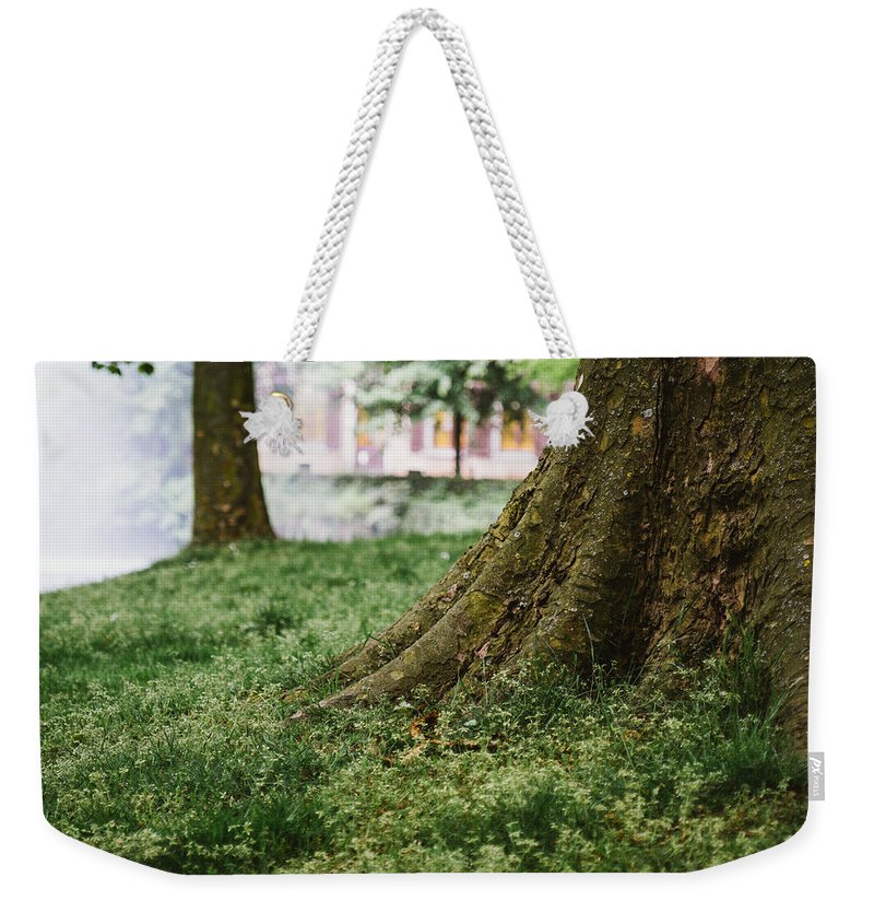 Tree Weekender Tote Bag featuring the photograph Tree Trunks In Spring by Pati Photography