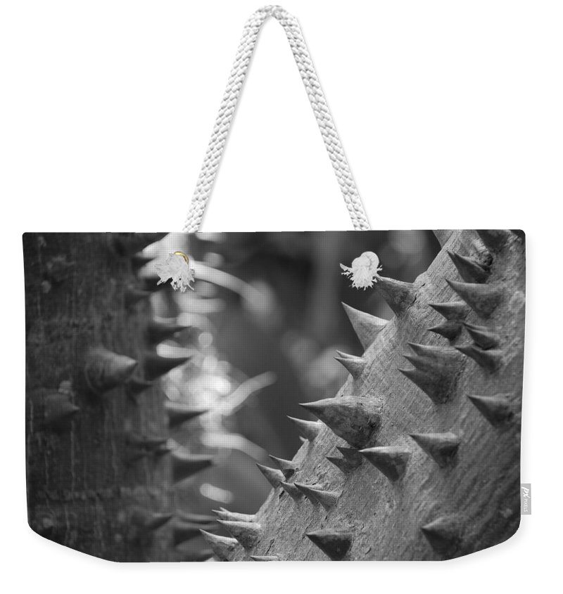 Spike Weekender Tote Bag featuring the photograph Tree With Spikes And Thorns by Rob Hans