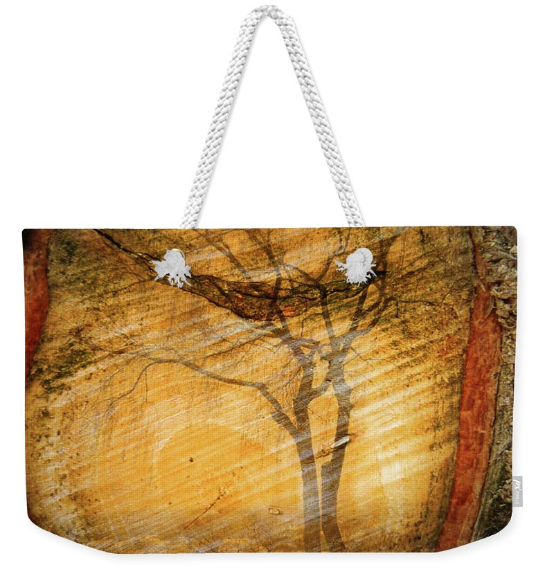 Trees Weekender Tote Bag featuring the photograph Tree Within A Tree by Tara Turner