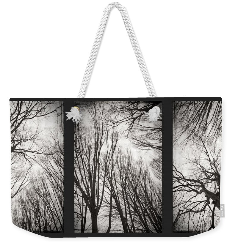 Black&white Weekender Tote Bag featuring the photograph Treeology by Dorit Fuhg