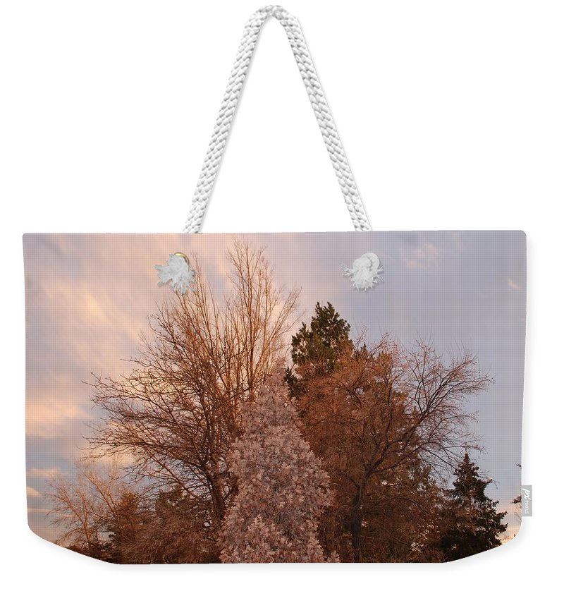 Trees Weekender Tote Bag featuring the photograph Trees At The State Capital by Rob Hans
